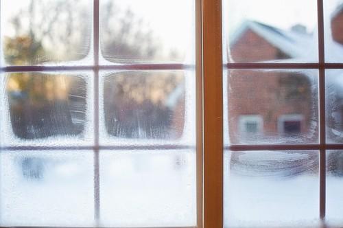 Comment protéger votre logement et limiter les déperditions énergétiques